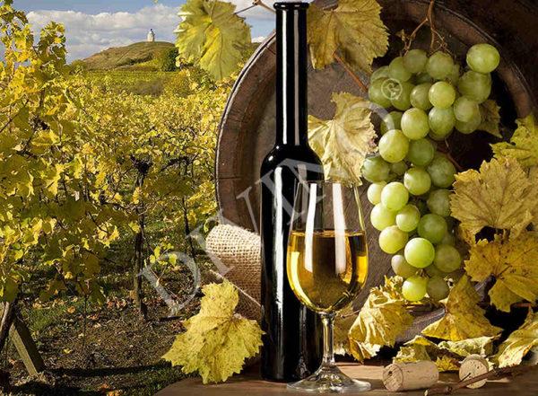 """Фотообои  Bon Appetit """"Вино"""" - С-305"""